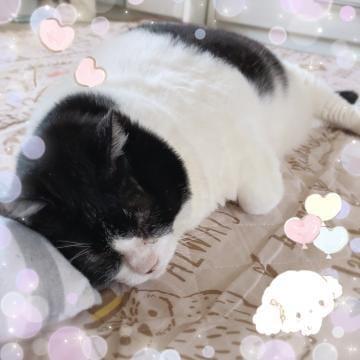 「少しずつ(* ? ??)?*」06/03(06/03) 13:00 | 純那の写メ・風俗動画