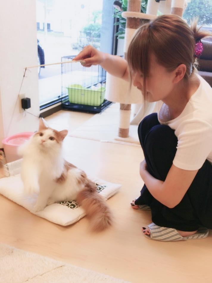夢白えりな 新潟・新発田風俗の最新写メ日記