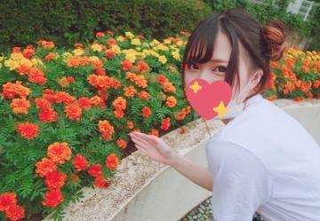 「わ」07/08(07/08) 11:21 | 若槻るるの写メ・風俗動画