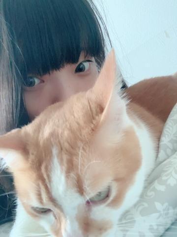 Nanami ナナミ|新大阪風俗の最新写メ日記