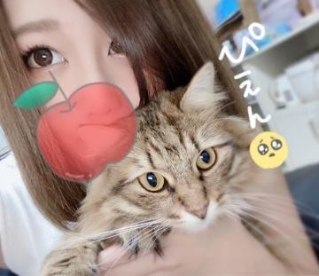 「仲良し様とカラオケ(><)」08/03(08/03) 16:52   るいの写メ・風俗動画