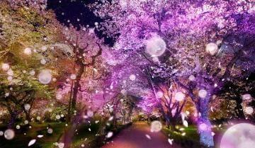 ちさと|千葉県ホテヘルの最新写メ日記