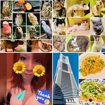 「08/12 Orbi横浜 at MARK IS みなとみらい✨」08/19(08/19) 20:14   あおいの写メ・風俗動画