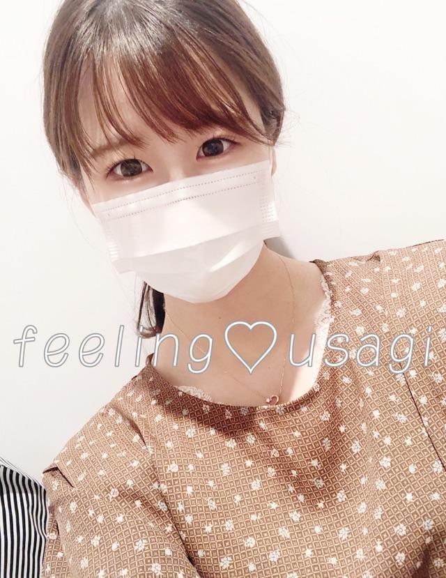「めずらしく」09/24(09/24) 21:11   うさぎの写メ・風俗動画
