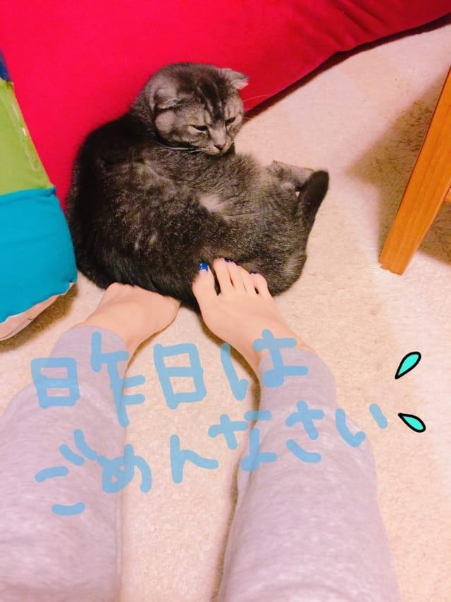 「Oさまへ」10/26(10/26) 15:48 | ひとみの写メ・風俗動画