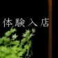 赤坂L【エル】の速報写真