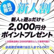 【会員様限定】新人割引!!激カワ美女応援イベント!!!|神戸ホットポイント