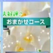 「お得で安心「おまかせコース」」11/19(月) 20:53 | クラブ高蘭のお得なニュース