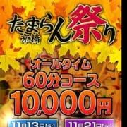 「◆年末を前に玉乱堂の一大イベント◆」11/22(木) 08:27   玉乱堂のお得なニュース