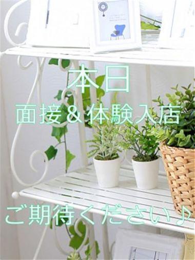 12/10 体験入店2|大人の遊園地 - 大宮風俗