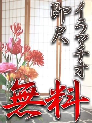 千尋(最後の砦 錦糸町店)のプロフ写真2枚目