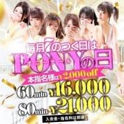 毎月7の付く日は…  PONYの日!|ポニーテール和歌山店