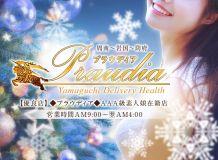 ◆プラウディア◆AAA級素人娘在籍店【周南~岩国~防府】 - 周南