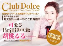 Dolce ~ドルチェ~ - 新宿・歌舞伎町