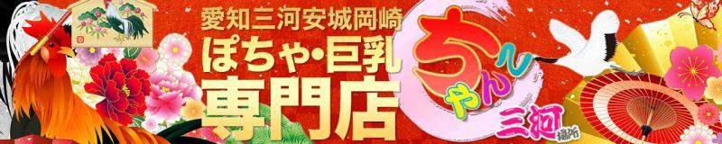 愛知三河安城岡崎ちゃんこ - 岡崎・豊田(西三河)