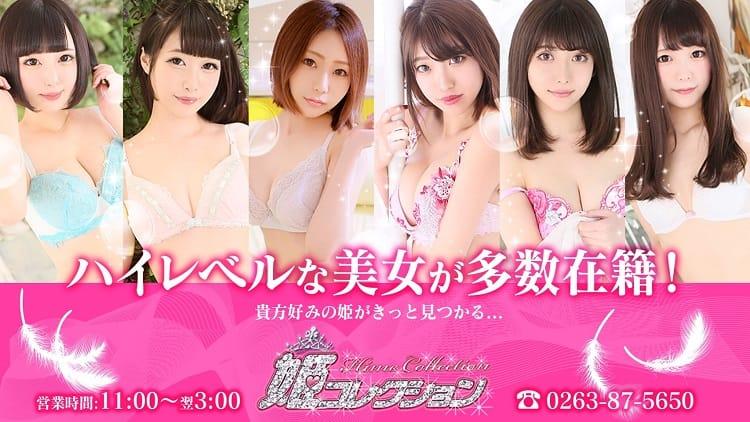 姫コレクション 松本店 - 松本・塩尻