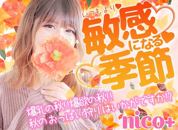 nico+(ニコプラス)博多店 - 福岡市・博多