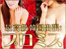 最高級韓国出張:プロミス 三河店 - 岡崎・豊田(西三河)