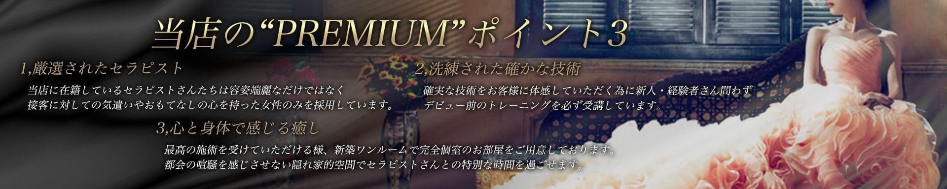 PREMIUM-プレミアム- その3