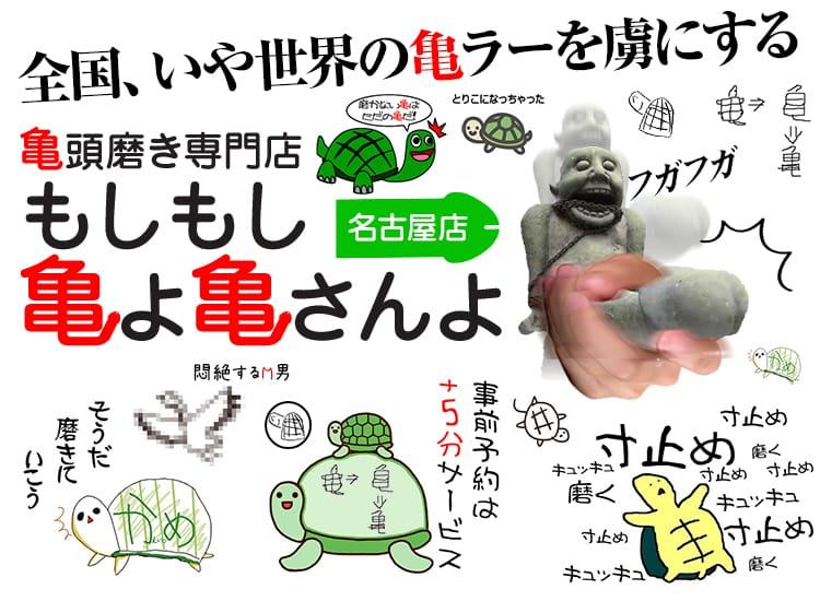 もしもし亀よ亀さんよ 名古屋店 - 名古屋