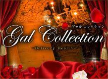 ギャルコレクション - 静岡市内・静岡中部