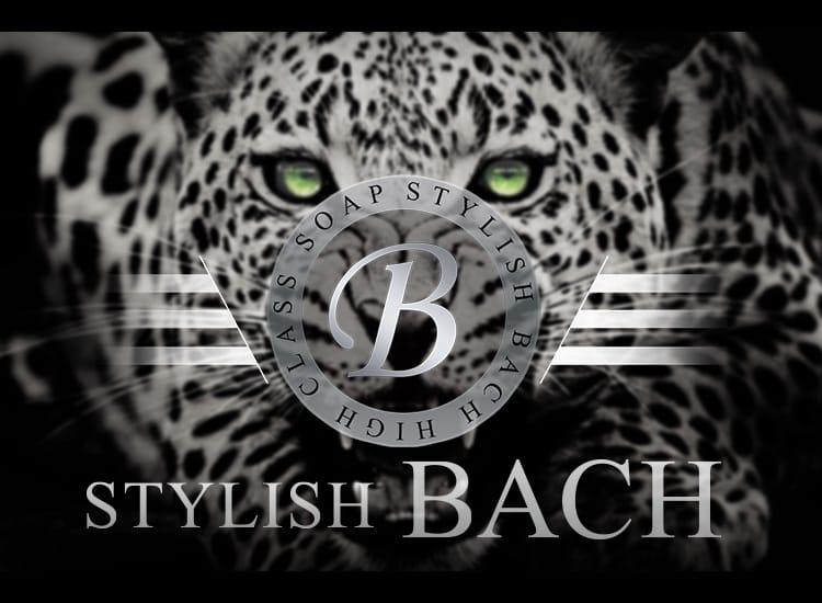 STYLISH BACH(バッハ) - 金津園