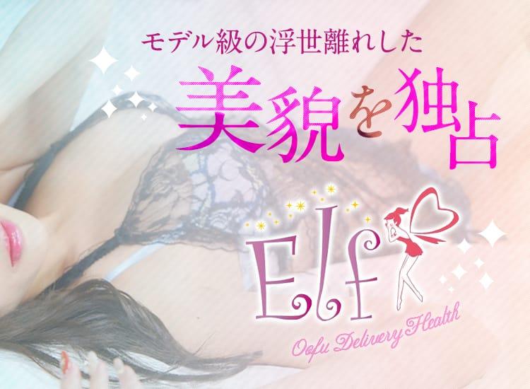エルフ - 浜松