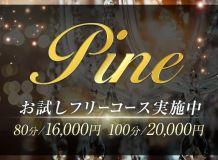 Pine-パイン- - 静岡市内