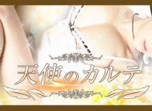 天使のカルテin所沢 - 所沢・入間