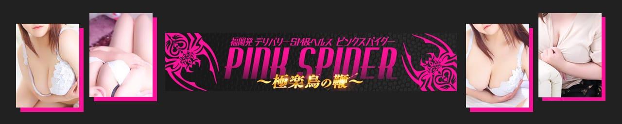 ピンクスパイダー~極楽鳥の鞭~