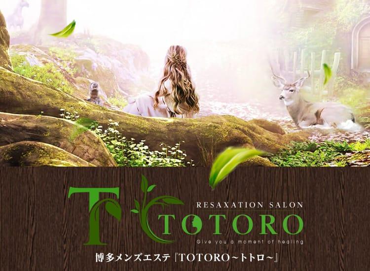 TOTORO~トトロ~ - 福岡市・博多