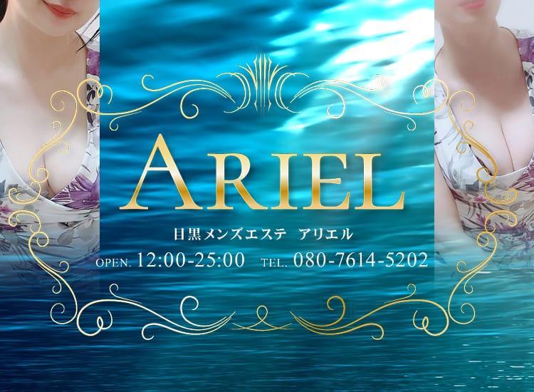 Ariel(アリエル) - 恵比寿・目黒