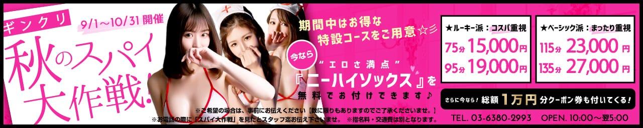 錦糸町 モデル系美女専門風俗エステGinGinクリニック その2