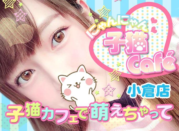 子猫カフェ - 北九州・小倉