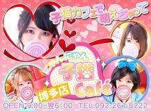 子猫カフェ博多店 - 福岡市・博多