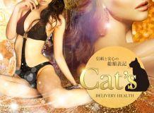 Cat's - 岐阜県その他