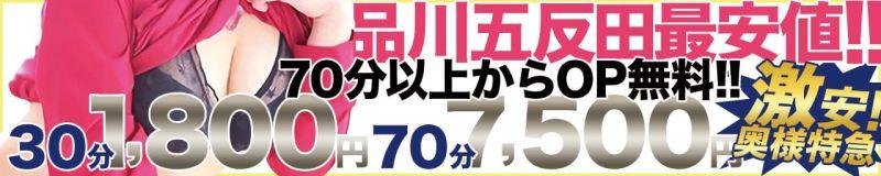 激安!奥様特急品川店 日本最安! - 品川