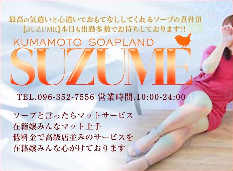 SUZUME - 熊本市内