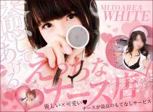 WHITE YESグループ - 水戸