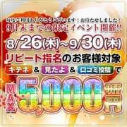 「最大5000円OFF!リピート還元祭開催♬♪」09/17(金) 04:06   MUSE spa(エステ)のお得なニュース