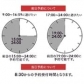 TSUBAKIの速報写真