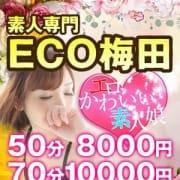 「ご新規様限定イベント開催♪」12/13(木) 22:37   スピードエコ梅田のお得なニュース