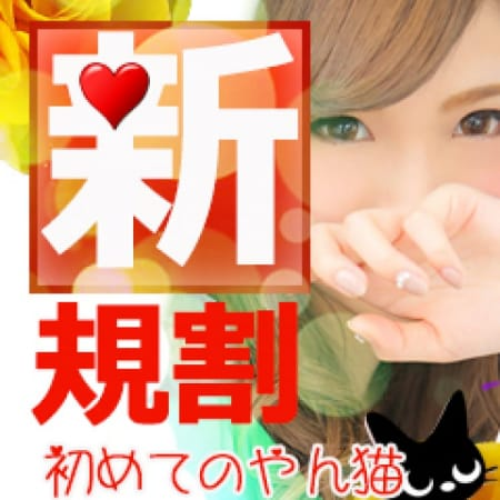 「◆ホテヘル限定の新規様割引◆」05/19(土) 13:55   やんちゃな子猫谷九店のお得なニュース